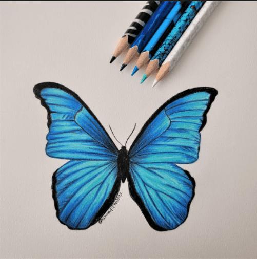 322 Anna Paula 28 Curitiba PA Lapisde Cr Color Peps Animals Borboleta Azul